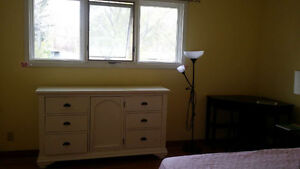 Nice and clean rooms for rent