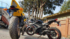 2013 Ninja 300 - AND Special Edition