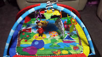 Baby Einstein Playmat and Infant Toys