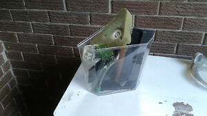 Small Aquarium set up Kitchener / Waterloo Kitchener Area image 1