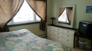Room available 575$/month January 1st (in West-Island)