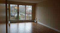 Room for rent at Clayton Park