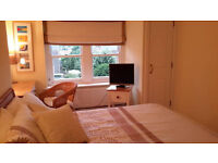Double room in a bright and spacious apartment based in Newington