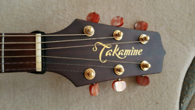 Takamine Garth Brooks Signature model