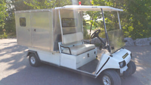 48V Electric Golf Cart / Utility Cart