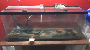 55 gallon tank with glass top