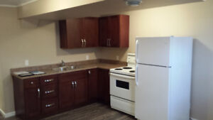 2 bdrm basement suite in Stony Plain available immediately