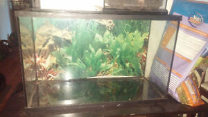 reptile tank 2 1/2 ft by 1 1/2 ft.( no lid )