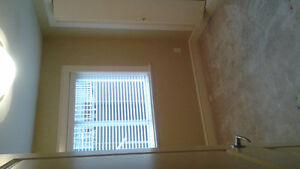 Two large bedroom--Kitsilano