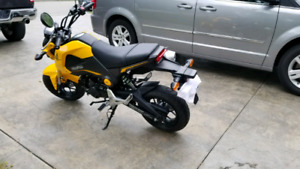 Mint condition Honda grom