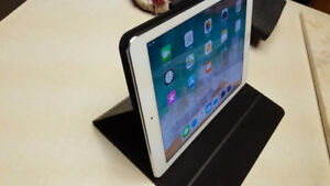 Apple Ipad Air2 and case