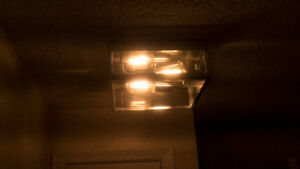 Ceiling light  with bulbs included