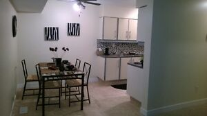 fully furnished and renovated one bedroom apartment Edmonton Edmonton Area image 6