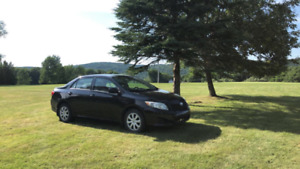 Great Condition Toyota Corolla CE for Sale!