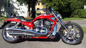Harley Davidson VROD CVO Screaming Eagle 2006  VRSCSE2