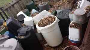 VARIOUS BARRELS, CONTAINERS  CALL JW@ 519-872-4030 London Ontario image 2