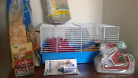 HAMSTERS + CAGE AND ACCESSORIES