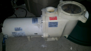 3hp and 1hp pool and spa pumps
