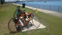 Stolen Miele bicycle