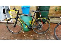 Specialized Fixie / Single Speed PRICE REDUCED