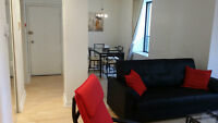 Fully furnished 2 bedroms Condo in the heart of Montreal
