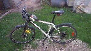 Reebok Axis mountain bike