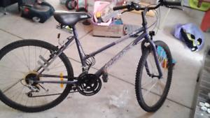 Indi mountain bike
