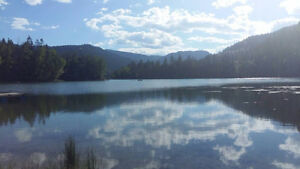 .5 acre lake access serviced lot