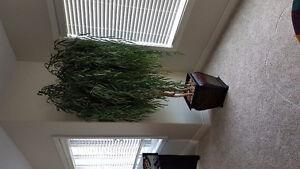 Beautiful large artificial tree
