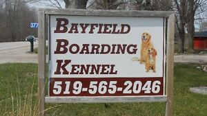 Bayfield Dog Boarding Kennel
