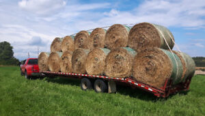ROUND BALE HAY FOR SALE