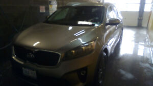 Kia sorento 2019 with problems