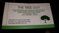 TheTreeGuy Property Maintenance. Professional Affordable service