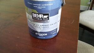 Gallon de peinture Berh - Vert