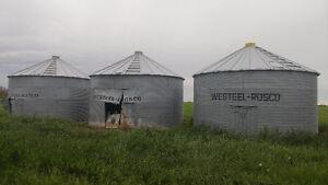 Free Grain Bins