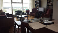 Female Roommate Wanted - Beautiful Highrise Views!