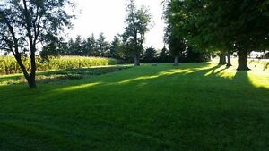 Country Bungalow for Rent Stratford Kitchener Area image 2