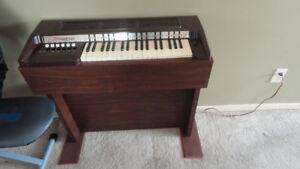 orgue magnus.