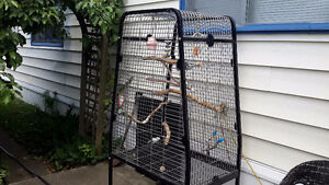 Very Large  Parrot  Cage as new...