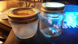Looking for free small canning jars and/or baby food jars.