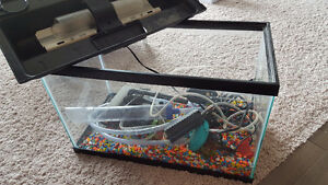 10 gallon fish tank