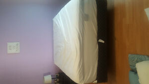 Queen sized mattress and box spring for sale!