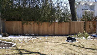 FENCE Not Looking so Good ?