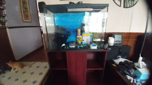37 Gallon Aquarium with Stand and Accessories