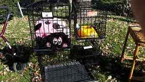 LIKE NEW DIFFERENT SIZES DOG CAGES Windsor Region Ontario image 1