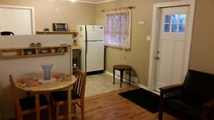 Awesome Large One Bedroom Now Available in Avondale St. John's Newfoundland image 4