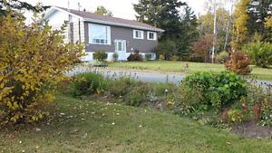 Maison à vendre à Nigadoo, NB