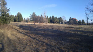 2.16 Acres Residential Vacant Land for Sale, Marmora, ON Peterborough Peterborough Area image 6