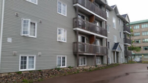 1 bedroom apartement DOWNTOWN-secure building HEAT/LIGHTS INCL.