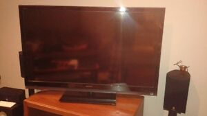 "SONY 52"" HD TV (some screen issues) – it's gotta go"